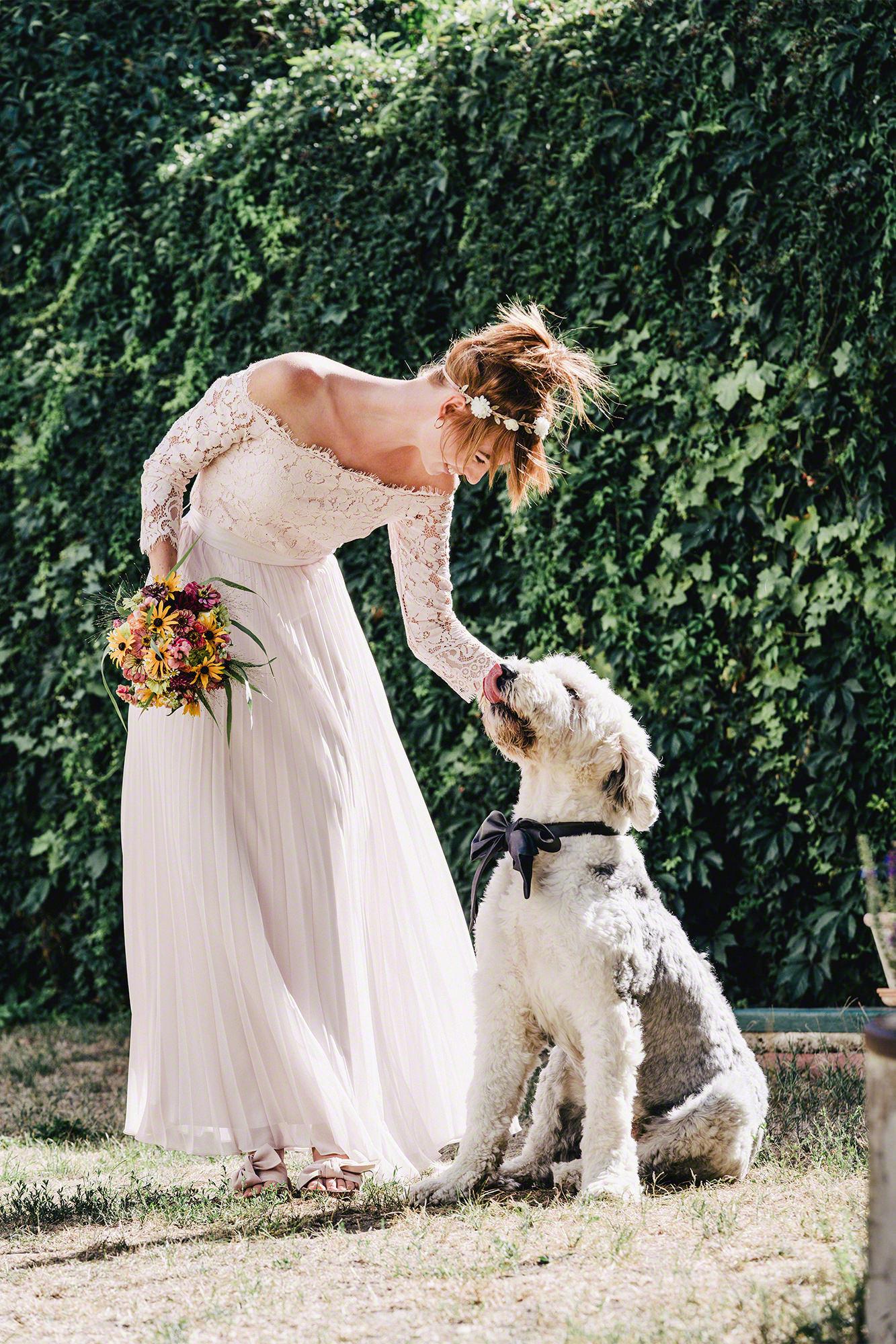 Hochzeit Braut Hund